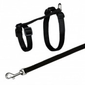 Harness & Leash for cats