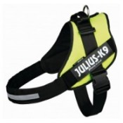 Julius K-9 harness