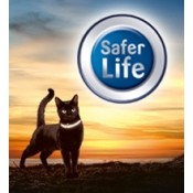 Visibility - Safety for Cats