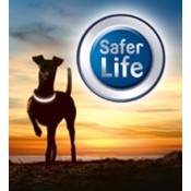 Visibility - Safety for dogs