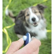 Training Aids for Dogs